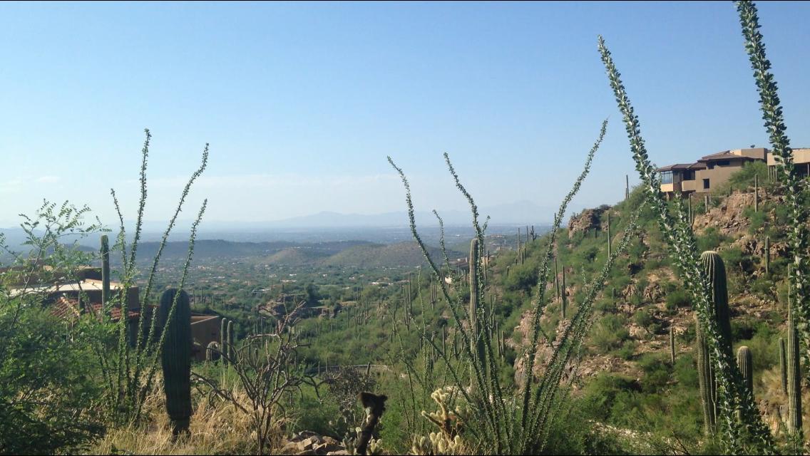 Ventana Canyon Mountain Estates