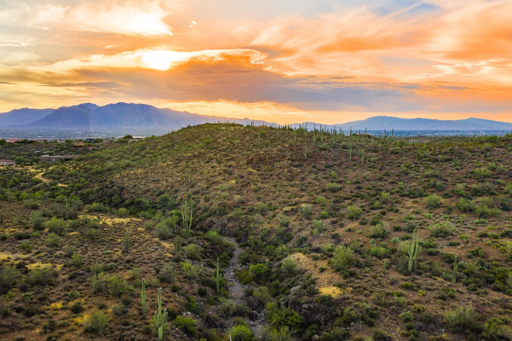 Lot Near Tucson Saguaro National Park