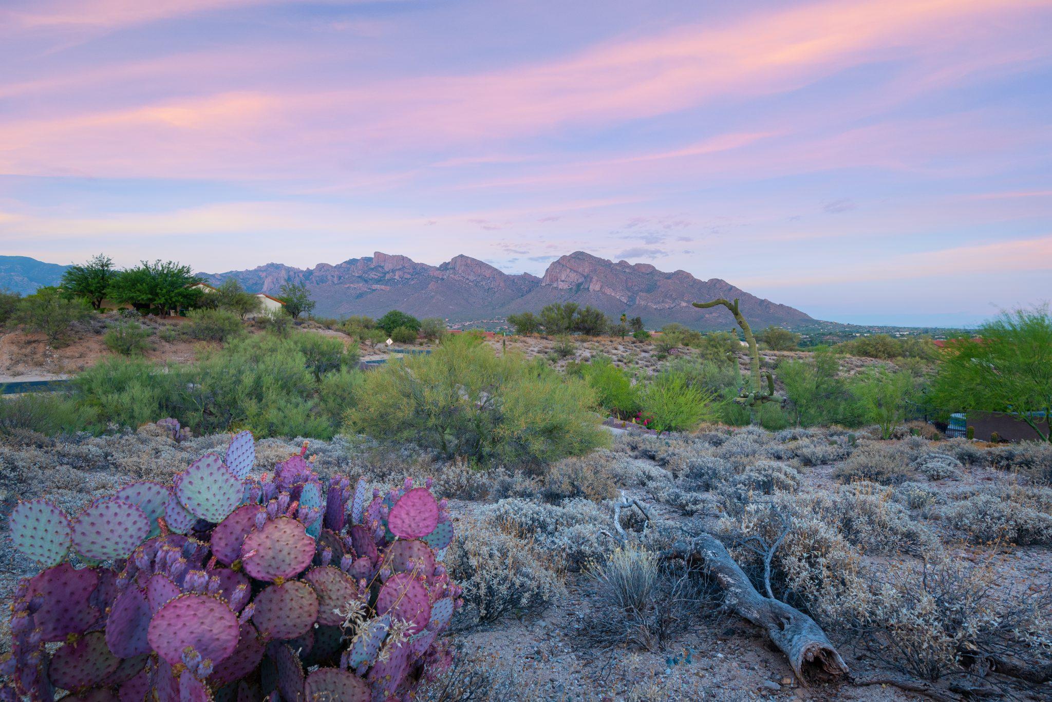 Northwest Tucson Oro Valley AZ Mountain View Custom Home Lot