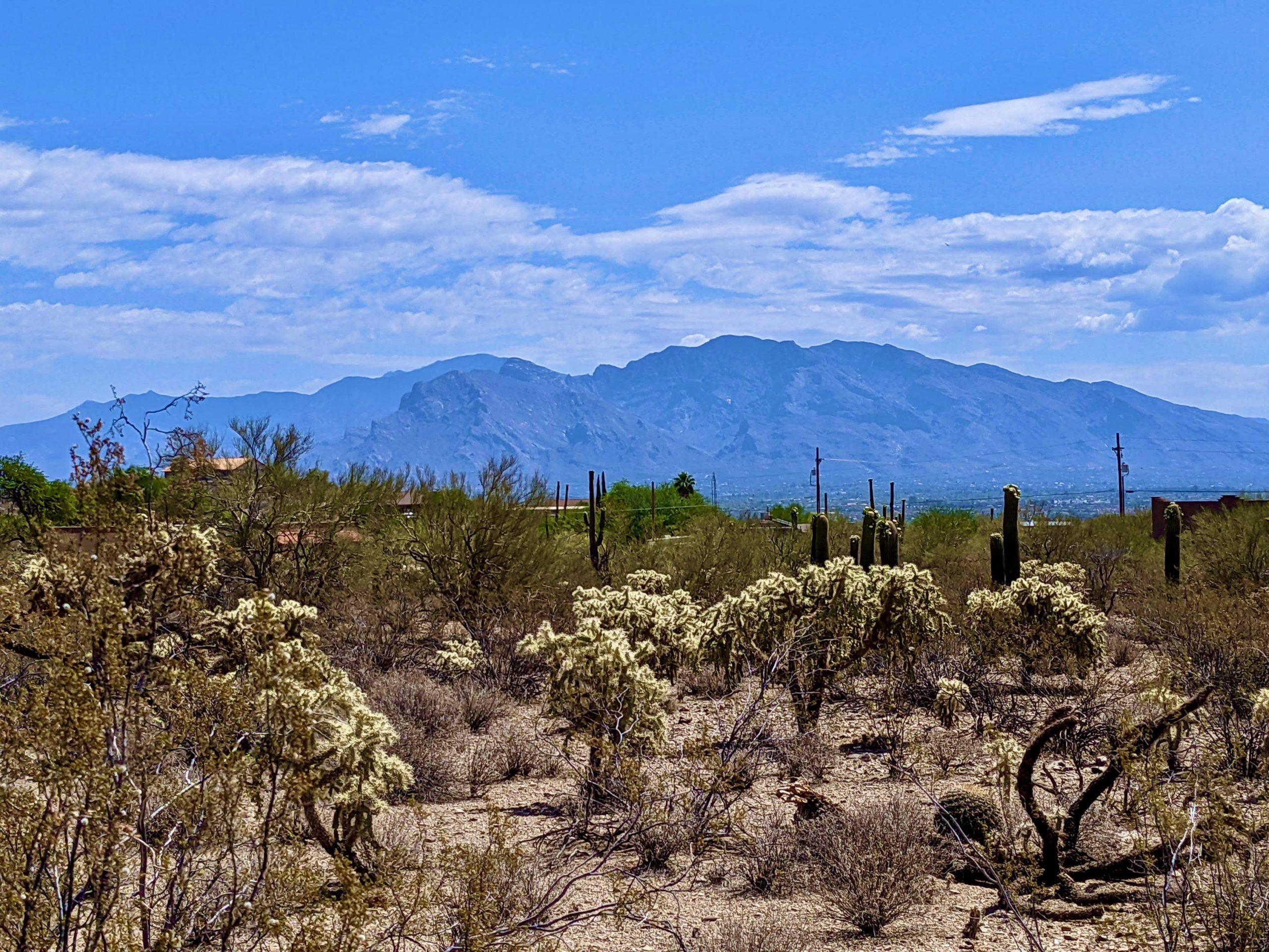 Custom Home Lot in West Tucson