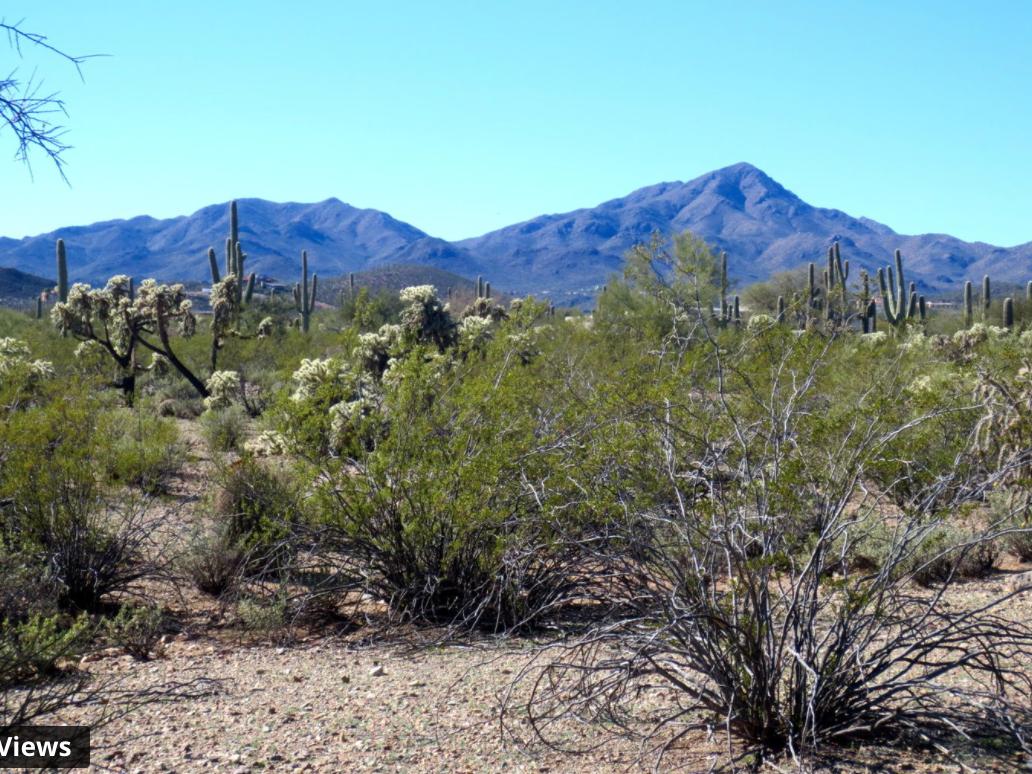 West Tucson Lot – Stunning Mountain Views